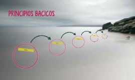 PRINCIPIOS BACICOS