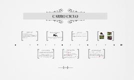 CARRO CICLO