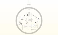 Modelo BioAlternativas