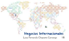 Negocios Internacinales