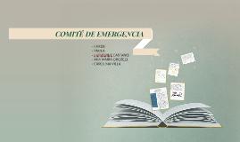 COMITE DE EMERGENCIA