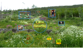 Hvordan kan jeg lære naturfag?