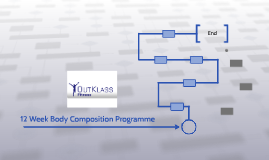 12 Week Body Composition Programme