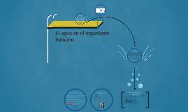 El agua en el organismo
