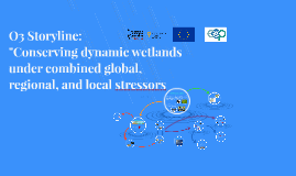 Storyline: Conserving dynamic wetlands under the combined global, regional, and local stressors
