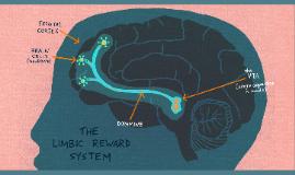 7.2 Sistemas de recompensas