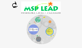 Why MSP-LEAD?