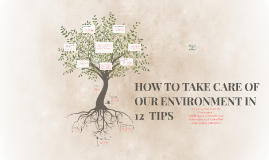 HOW TO TAKE CARE OF OUR ENVIRONMENT IN 12  TIPS