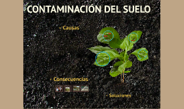 Copy of CONTAMINACION DEL SUELO