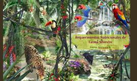 Requerimientos Nutricionales de Fauna Silvestre