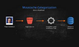 Copy of Copy of Moustache Categorization