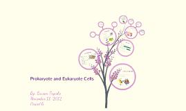 Prokaryote and Eukaryote Cells