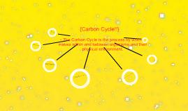 CarbonCycle