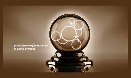 planeacion y organización de la fuerza de venta