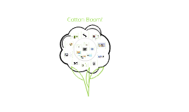 Ch. 12-1 The Growth of the Cotton Industry