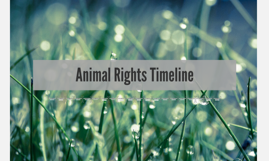 Animal Rights Timeline