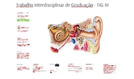 Trabalho Interdisciplinar de Graduação III