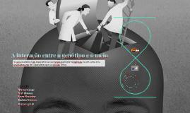 A interação entre o genótipo e o meio