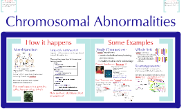 AP Bio-  Cell Cycle 4: Chromosomal Abnormalities