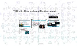 TED talk : How we found the giant squid.