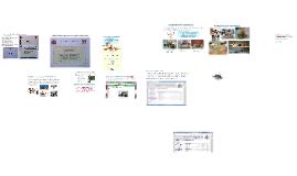 Copy of capacitacio unitat treball