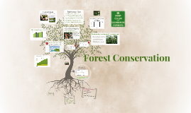 Copy of Forest Conservation