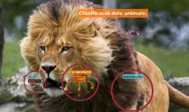 Clasificacio dels animals