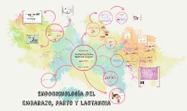 Endocrinología del