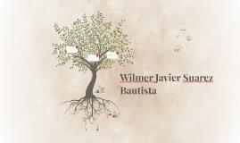 Wilmer Javier Suarez Bautista