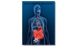 Motivos de consulta del Sistema Digestivo