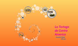 Copy of LA tortuga