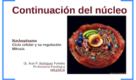 Continuacion núcleo