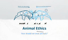 Lecture 13 - Animal Ethics