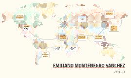 DVDRW Y FUENTES DE PODER DE PODER EMILIANO MONTENEGRO H1