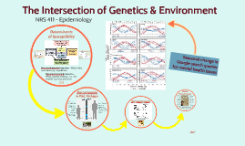 The Intersection of Genetics & Environment