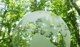 Copy of bienes y servicios ambientales
