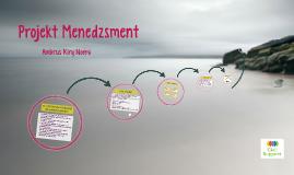 Projekt menedzsment