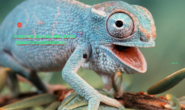 struktur anatomi pada reptil