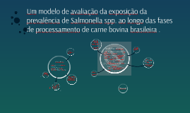 An exposure assessment model of the prevalence of Salmonella