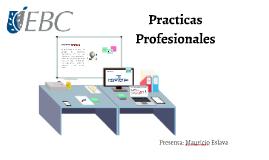 Prácticas Profesionales.