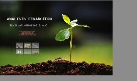 Esan - Análisis Financiero SEMIAGRO