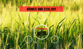 Biomes and ecology