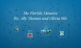 The Florida Manatee