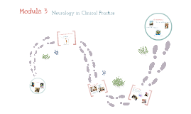 Module 3: Neurology in Clinical Practice