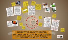 Copy of NARKOTİK (UYUŞTURUCU) MADDELER, KOLAY ULAŞILABİLİR UYUŞTURUC