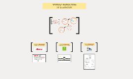 Niveles y Estructura de la Gestión