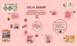 türk islam devletlerinde astronomi