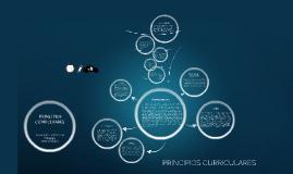 Copy of PRINCIPIOS CURRICULARES