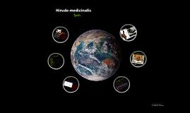 The leech; Hirudo medicinalis