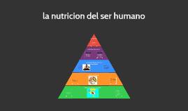 Copy of la nutricion del ser humano